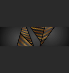 black abstract corporate banner with bronze lines vector image