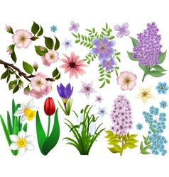Collection spring flowers raster version vector