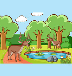 scene with deers in forest vector image