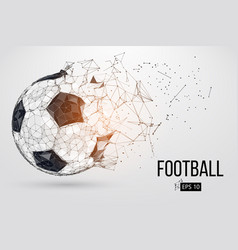 silhouette a football ball vector image