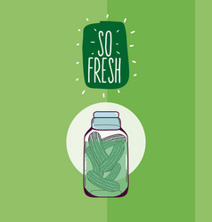 so fresh mason jar vector image