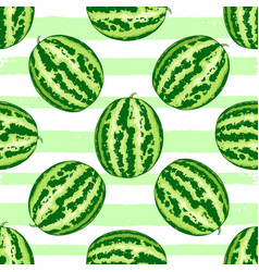 summer pattern with watermelon vector image