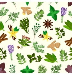 Fresh spicy herbs and condiments seamless pattern vector image