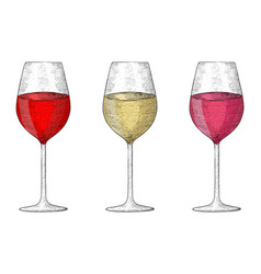 glass of wine collection of hand drawn sketches vector image