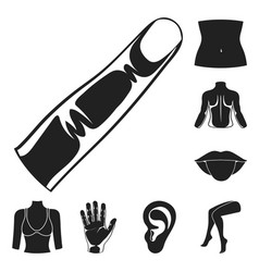 part of the body limb black icons in set vector image