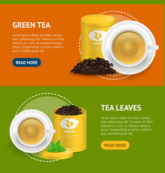 realistic detailed 3d green tea banner horizontal vector image