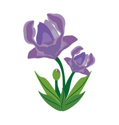anemone flower spring image vector image