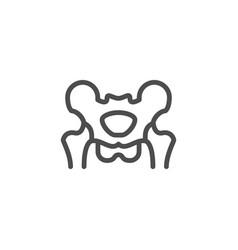 pelvis line icon vector image