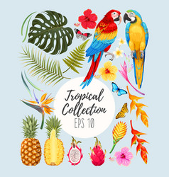 tropical set vector image