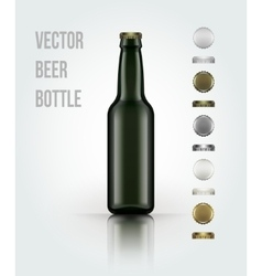 Blank glass beer bottle for new design vector image