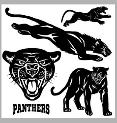 panthers - set vector image