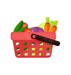 red plastic shopping basket full of fresh vector image