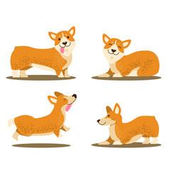 playing corgi dog set of icons vector image vector image