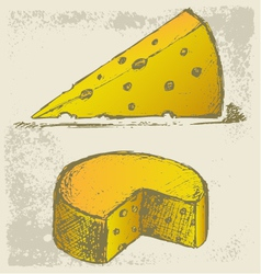 Piece cheese vector image vector image