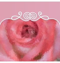 Beautiful background with pink rose and pattern vector