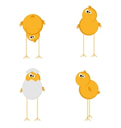 funny chicken set vector image vector image