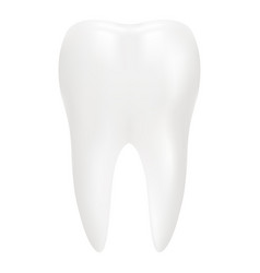 Tooth 3d render dental medicine and health vector