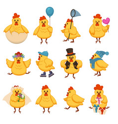 Cartoon chicken funny cute characters for kid vector