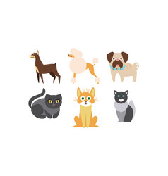 cats and dogs different breeds set cute vector image
