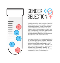 Gender selection poster vector