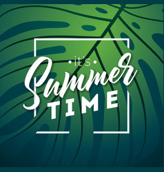 Its summer time with typography vector