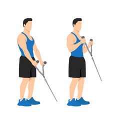Man doing cable hammer bicep curls exercise vector