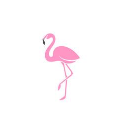 pink flamingo logo vector image