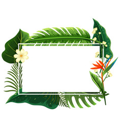 Square frame with green leaves and flowers vector