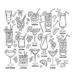 summer alcoholic cocklails engraving set vector image