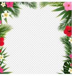 tropical border and white background transparent vector image