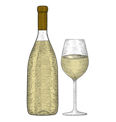 white wine bottle and glass hand drawn sketch vector image