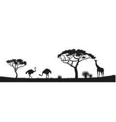 black silhouette of ostrich giraffe in savannah vector image