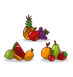 set of fruit fresh tasty apple pineapple grape vector image