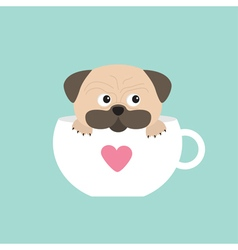 Pug dog mops paw sitting in big cup with heart vector image
