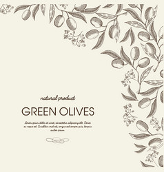 abstract floral hand drawn template vector image
