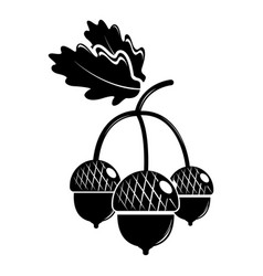 acorn icon simple black style vector image