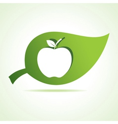 Apple icon at leaf vector image