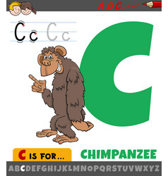 Letter c from alphabet with cartoon chimpanzee vector