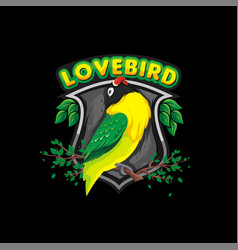 lovebird design vector image