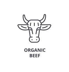 Ogranic beef line icon outline sign linear vector