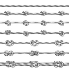 White twisted rope border set vector image vector image