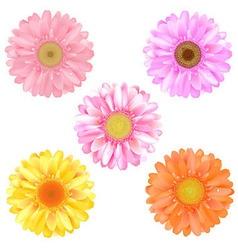 Color Gerbers vector image vector image