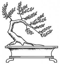 bonsai sketch vector image vector image