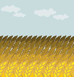 Field of wheat Grain field and blue sky Rye Spikes vector image