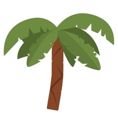 Palm tree icon vector image