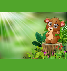 Cartoon of baby bear sitting on tree stump with gr vector