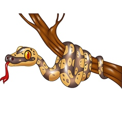 Cartoon snake on a tree branch vector