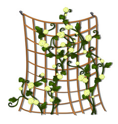 Decorative hedge made of grid tied brown rope with vector