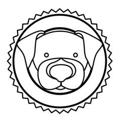 emblem dog hunter city icon vector image