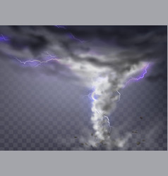 gray hurricane tornado with lightnings vector image